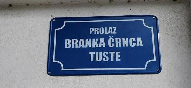 ulice-protiv-fasizma-12-novi-sad-2012-tustina-photo-sinisa-dronjak