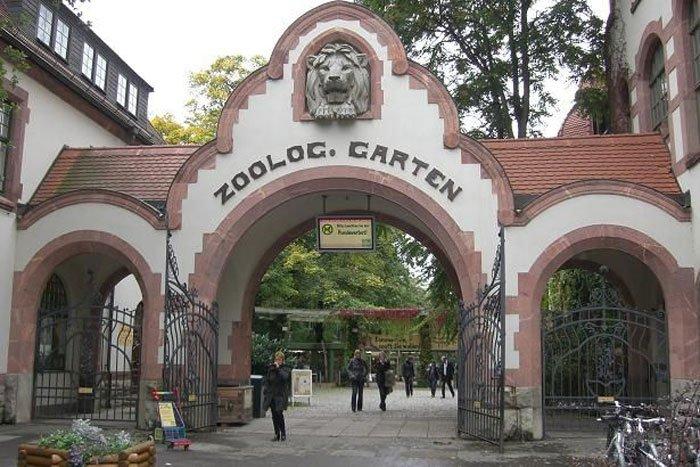 WGT2014-zoo-photo-Matea