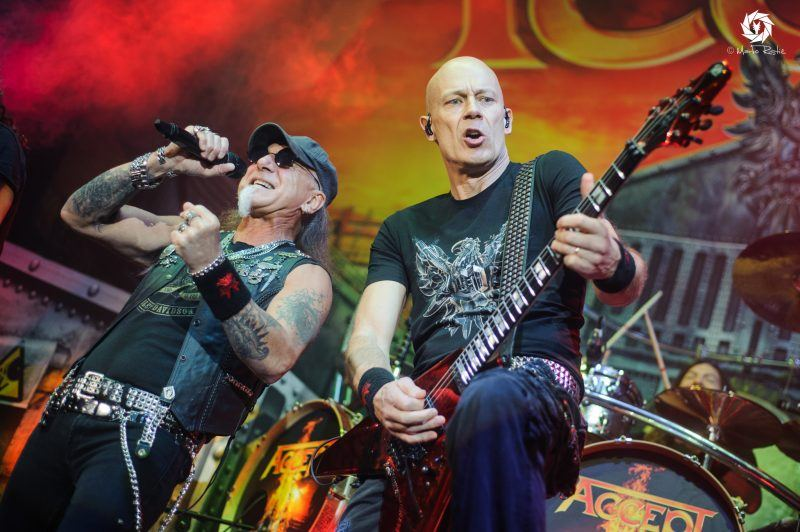 accept-live-belgrade-2017-photo-marko-ristic