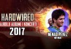 najbolje-2017-nenad-pekez